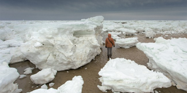 Sea ice Cape Cod